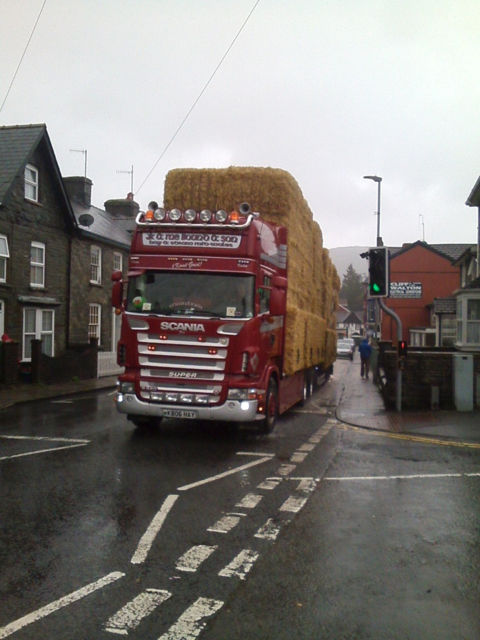 058 W Road to CAT Hay
