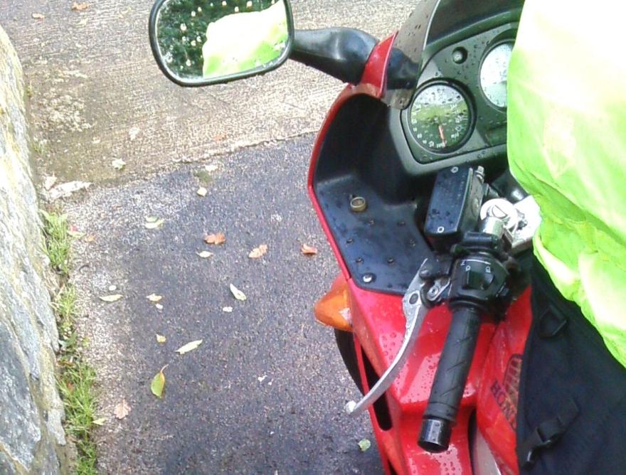 128 w betys bike autumn leaves